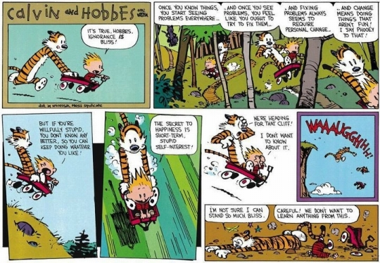 calvin-and-hobbes-its-true-hobbes-ignorance-is-bliss