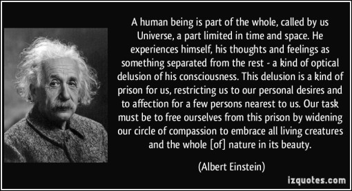 quote-a-human-being-is-part-of-the-whole-called-by-us-universe-a-part-limited-in-time-and-space-he-albert-einstein-294082